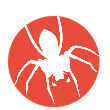 creative web design ireland whitespider logo